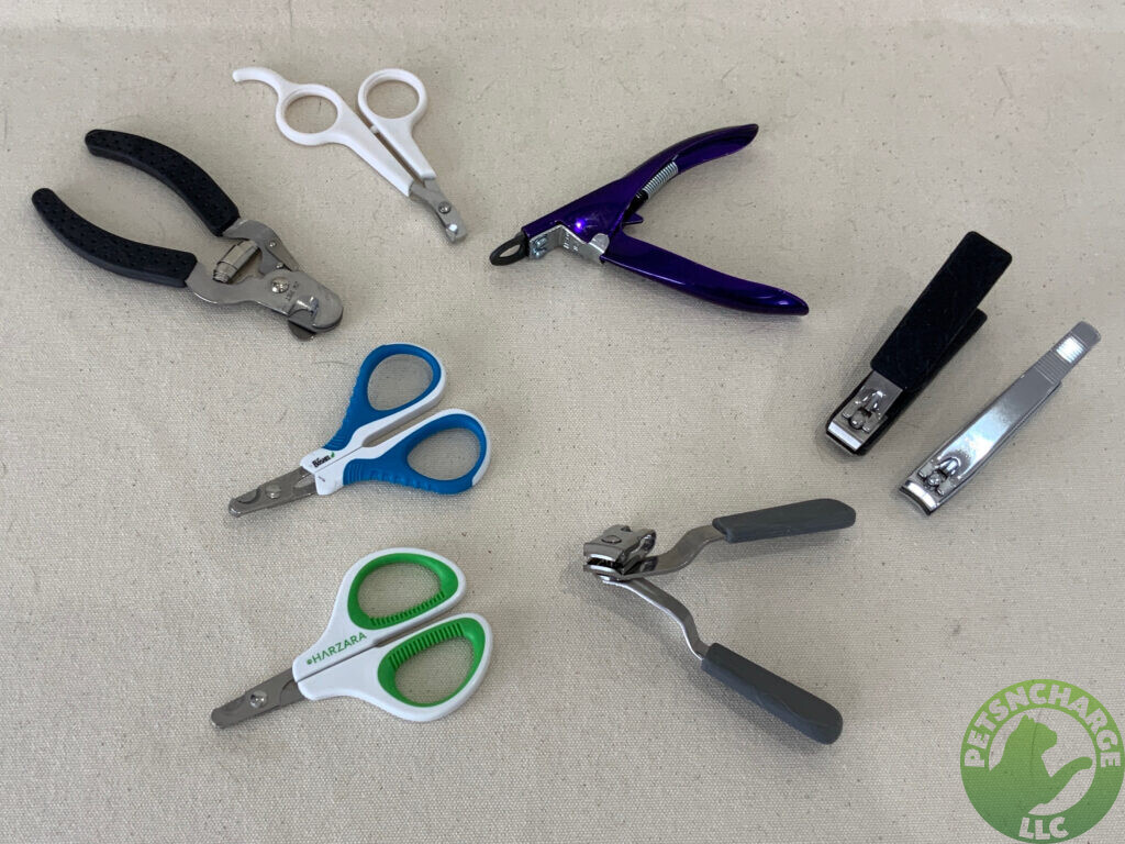 Assortment Of Nail Clipping Tools